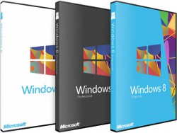 Windows 8.1 Pro 64 bit OEM
