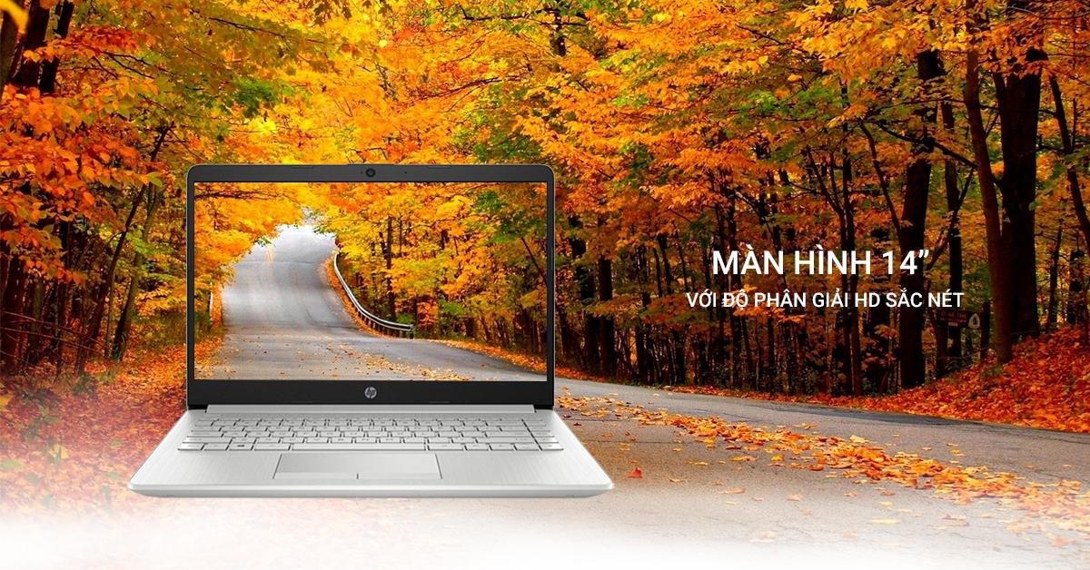 Laptop HP 14s-dq1022TU 8QN41PA (i7-1065G7/8Gb/512GB SSD/14/VGA ON/Win 10/Silver)